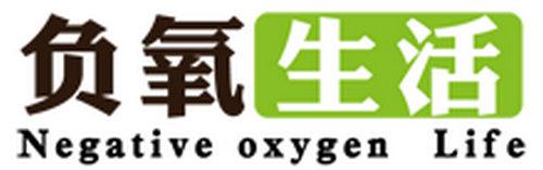 北京专业除甲醛公司:负氧生活空气治理中心
